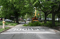 Using GIS for Urban Forest Maintenance