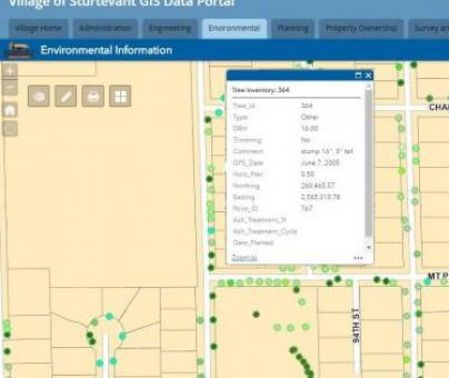 Web-Based Mapping Portal Implementation